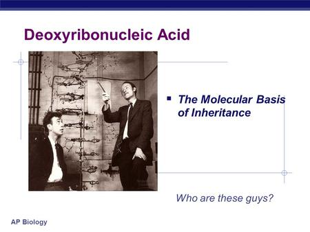 AP Biology Deoxyribonucleic Acid  The Molecular Basis of Inheritance Who are these guys?