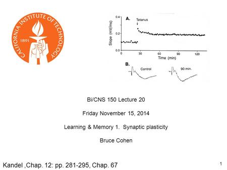 Bi/CNS 150 Lecture 20 Friday November 15, 2014 Learning & Memory 1. Synaptic plasticity Bruce Cohen Kandel,Chap. 12: pp. 281-295, Chap. 67 1.