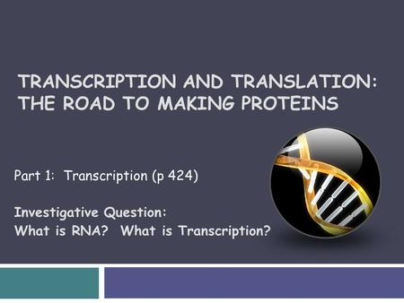 TRANSCRIPTION AND TRANSLATION: THE ROAD TO MAKING PROTEINS Part 1: Transcription (p 424) Investigative Question: What is RNA? What is Transcription?