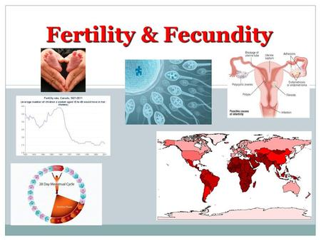 Fertility & Fecundity. Technology allows us to control reproduction…. This is more than just the pill and condoms Cultural and Geographic variations &