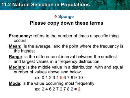 11.2 Natural Selection in Populations Sponge Please copy down these terms Frequency: refers to the number of times a specific thing occurs Mean: is the.