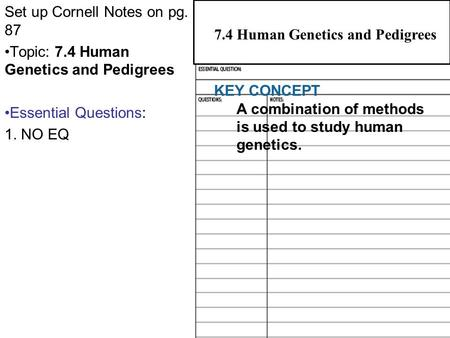 7.4 Human Genetics and Pedigrees Set up Cornell Notes on pg. 87 Topic: 7.4 Human Genetics and Pedigrees Essential Questions: 1. NO EQ 2.1 Atoms, Ions,