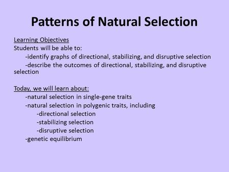 Patterns of Natural Selection