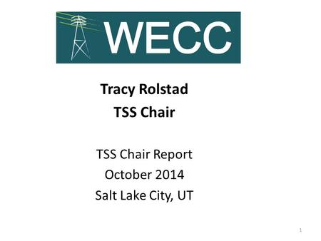 Tracy Rolstad TSS Chair TSS Chair Report October 2014 Salt Lake City, UT 1.