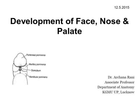 Development of Face, Nose & Palate