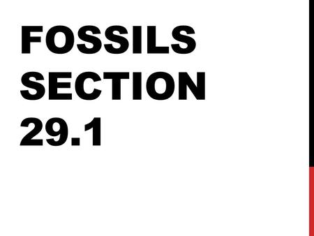 FOSSILS SECTION 29.1. PALEONTOLOGY The study of life that existed in prehistoric times.