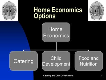 Catering and Child Development1 Home Economics Options Home Economics Catering Child Development Food and Nutrition.
