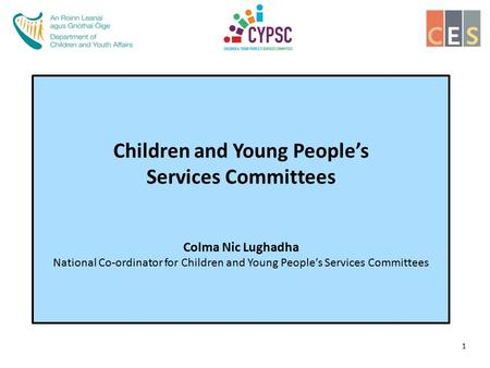 Children and Young People's Services Committees Colma Nic Lughadha National Co-ordinator for Children and Young People's Services Committees 1.