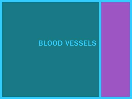 BLOOD VESSELS.  Arteries take blood away from the heart. BLOOD VESSELS.