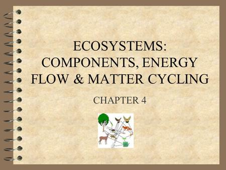 ECOSYSTEMS: COMPONENTS, ENERGY FLOW & MATTER CYCLING CHAPTER 4.