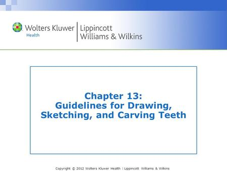 Chapter 13: Guidelines for Drawing, Sketching, and Carving Teeth