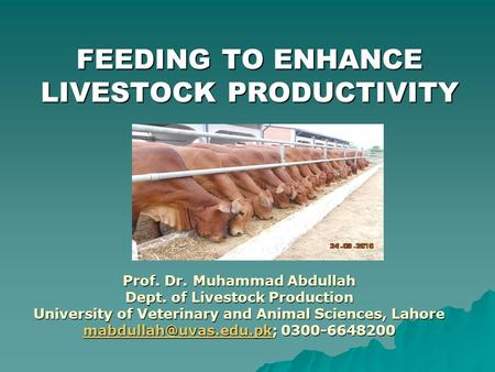 FEEDING TO ENHANCE LIVESTOCK PRODUCTIVITY Prof. Dr. Muhammad Abdullah Dept. of Livestock Production University of Veterinary and Animal Sciences, Lahore.