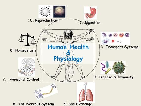 Human Health & Physiology 1. Digestion 3. Transport Systems 4. Disease & Immunity 5. Gas Exchange6. The Nervous System 7. Hormonal Control 8. Homeostasis.