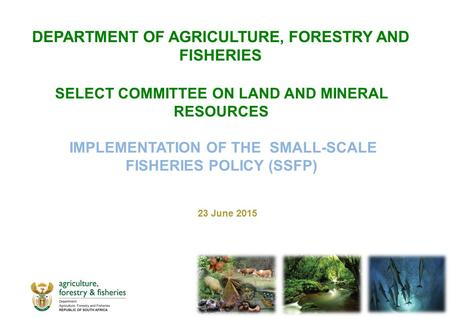 SELECT COMMITTEE ON LAND AND MINERAL RESOURCES IMPLEMENTATION OF THE SMALL-SCALE FISHERIES POLICY (SSFP) 23 June 2015 DEPARTMENT OF AGRICULTURE, FORESTRY.