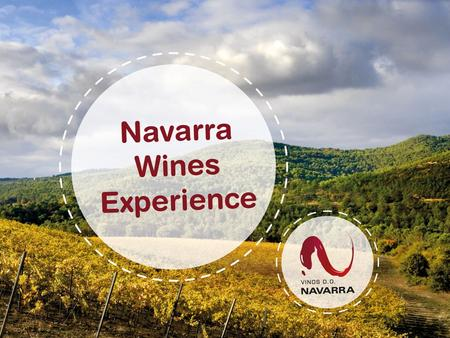 Welcome to Navarra Among the oldest Spanish wine DO, created in 1933. 11.400 hectares (28,417 acres), which is 1,2% of the total Spain´s vineyard surface.