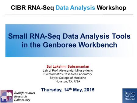 Small RNA-Seq Data Analysis Tools in the Genboree Workbench Sai Lakshmi Subramanian Lab of Prof. Aleksandar Milosavljevic Bioinformatics Research Laboratory.