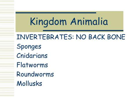 Kingdom Animalia INVERTEBRATES: NO BACK BONE Sponges Cnidarians Flatworms Roundworms Mollusks.