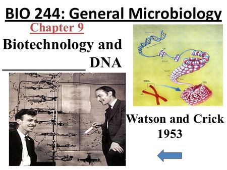 BIO 244: General Microbiology Biotechnology and ___________ DNA Chapter 9 Watson and Crick 1953.