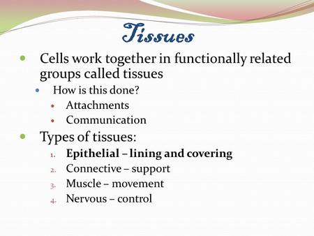 Tissues Cells work together in functionally related groups called tissues How is this done? Attachments Communication Types of tissues: 1. Epithelial –