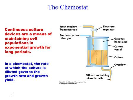 The Chemostat Continuous culture devices are a means of maintaining cell populations in exponential growth for long periods. In a chemostat, the rate at.