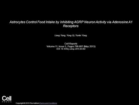 Astrocytes Control Food Intake by Inhibiting AGRP Neuron Activity via Adenosine A1 Receptors Liang Yang, Yong Qi, Yunlei Yang Cell Reports Volume 11, Issue.