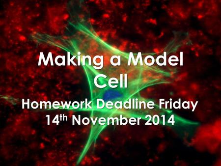 Homework Deadline Friday 14th November 2014