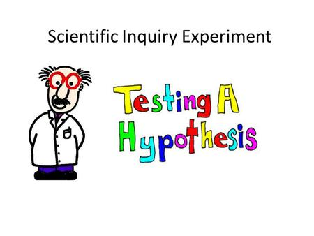 Scientific Inquiry Experiment