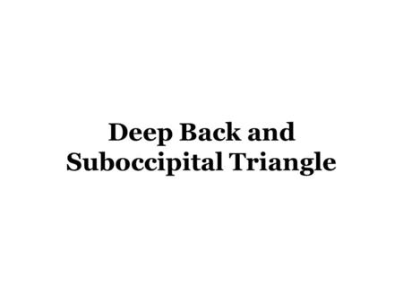 Deep Back and Suboccipital Triangle