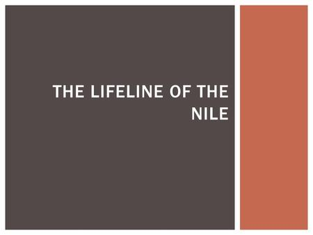 The Lifeline of the nile