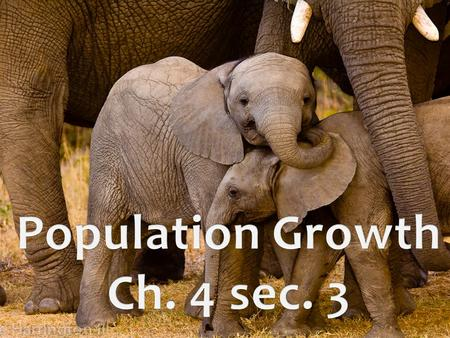 Factors That Determine Population Growth Growth rate: change in a population's size over time. A population's growth rate is determined by births, deaths,