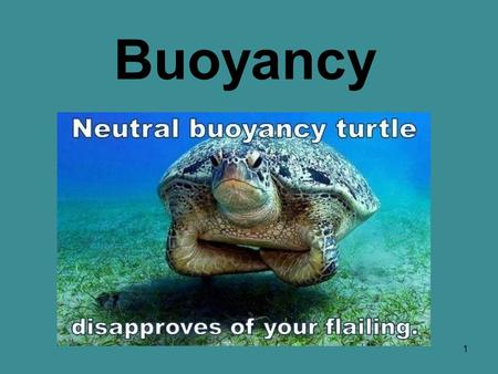 1 Buoyancy. 2 What is buoyancy? 3 When we get into the water… our weight exerts force on the water, and the water pushes back on us. buoyancy This upward.