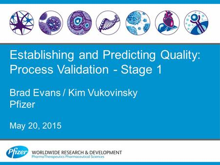 Establishing and Predicting Quality: Process Validation - Stage 1