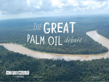An edible vegetable oil From the fruit of oil palm trees The most widely used vegetable oil.