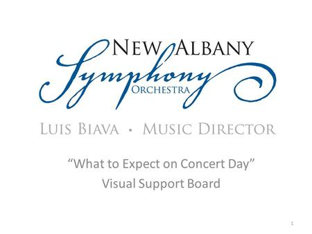 """What to Expect on Concert Day"" Visual Support Board 1."