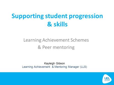 Learning Achievement Schemes & Peer mentoring
