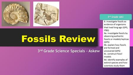 Fossils Review 3 rd Grade Science Specials - Askew 3 rd Grade AKS.