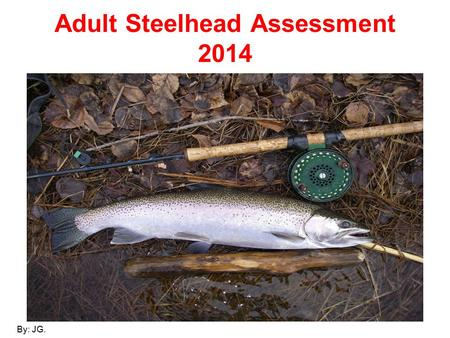 Adult Steelhead Assessment 2014 By: JG.. Co-op Angler 2014 (A partnership in science between the Ontario Ministry of Natural Resources and the North Shore.