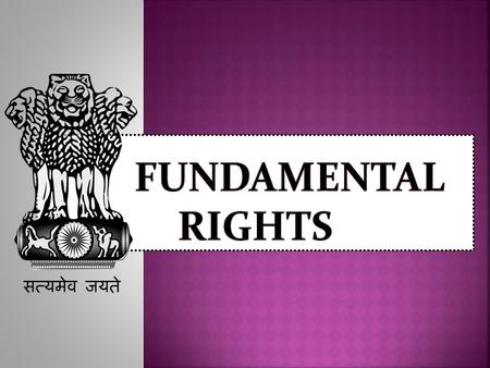 FuNdAmEnTal RiGHts.