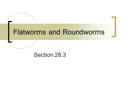 Flatworms and Roundworms Section 28.3. Flatworms The largest group of acoelomate worms Contain a mesoderm Has tissues organized into organs Bilaterally.