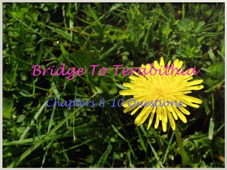 Bridge To Terabithia Chapters 8-10 Questions.