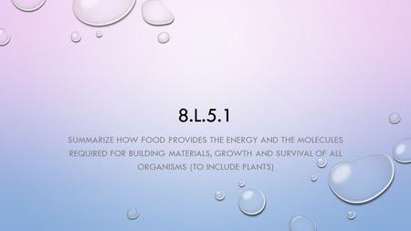 8.L.5.1 SUMMARIZE HOW FOOD PROVIDES THE ENERGY AND THE MOLECULES REQUIRED FOR BUILDING MATERIALS, GROWTH AND SURVIVAL OF ALL ORGANISMS (TO INCLUDE PLANTS)