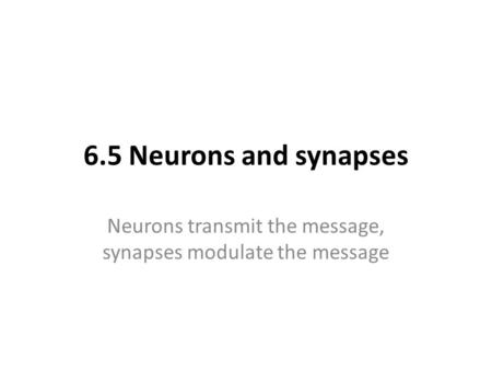 Neurons transmit the message, synapses modulate the message