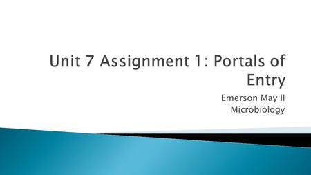 Unit 7 Assignment 1: Portals of Entry