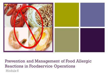 + Prevention and Management of Food Allergic Reactions in Foodservice Operations Module 6.