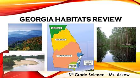 GEORGIA HABITATS REVIEW 3 rd Grade Science – Ms. Askew.
