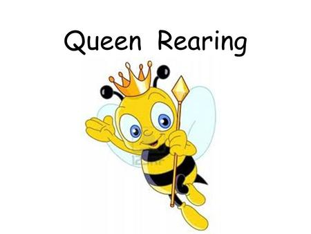 Queen Rearing. The following is required for successful raising of queens: ample supply of nectar and good quality pollens an abundance of sexually mature,