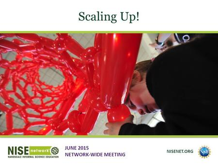 Scaling Up! JUNE 2015 NETWORK-WIDE MEETING NISENET.ORG.