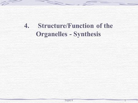 Topic 41 4.Structure/Function of the Organelles - Synthesis.