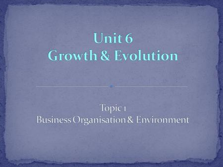 Topic 1 Business Organisation & Environment