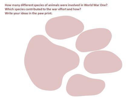 How many different species of animals were involved in World War One? Which species contributed to the war effort and how? Write your ideas in the paw.